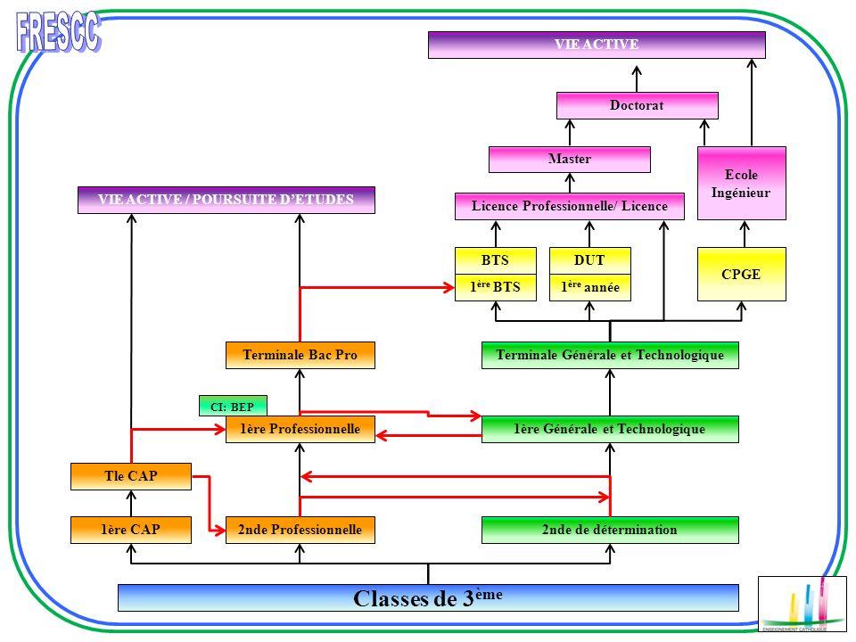 Classes de 3 ème 1ère CAP CI: BEP Tle CAP 2nde Professionnelle 1ère Professionnelle Terminale Bac Pro VIE ACTIVE / POURSUITE DETUDES 2nde de détermina
