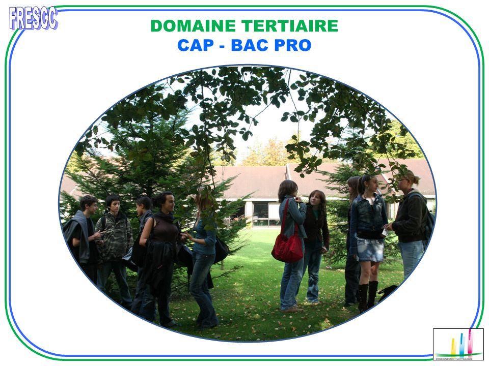 DOMAINE TERTIAIRE CAP - BAC PRO