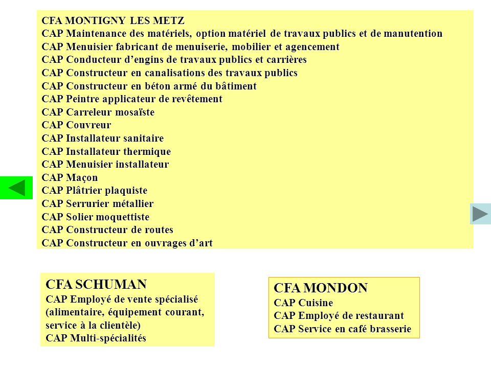 CFA MONTIGNY LES METZ CAP Maintenance des matériels, option matériel de travaux publics et de manutention CAP Menuisier fabricant de menuiserie, mobil