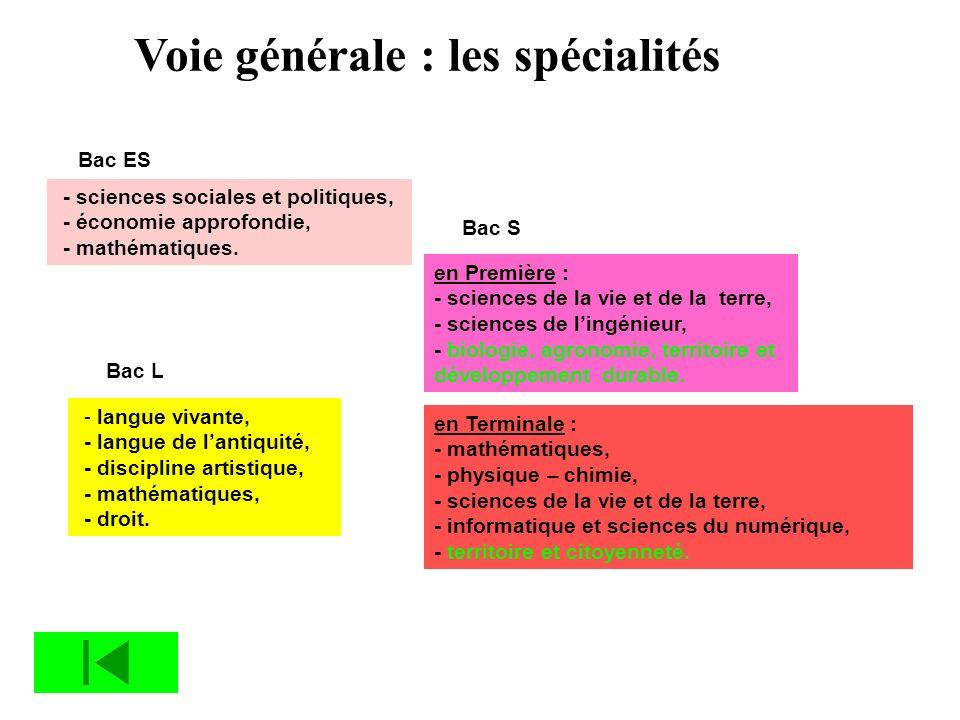 Voie générale : les spécialités Bac ES - sciences sociales et politiques, - économie approfondie, - mathématiques. Bac L - langue vivante, - langue de