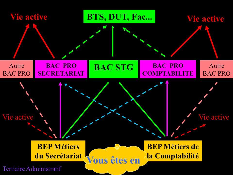 BEP Métiers du Secrétariat BEP Métiers de la Comptabilité Vie active BAC STG BAC PRO SECRETARIAT BAC PRO COMPTABILITE Vie active BTS, DUT, Fac... Autr