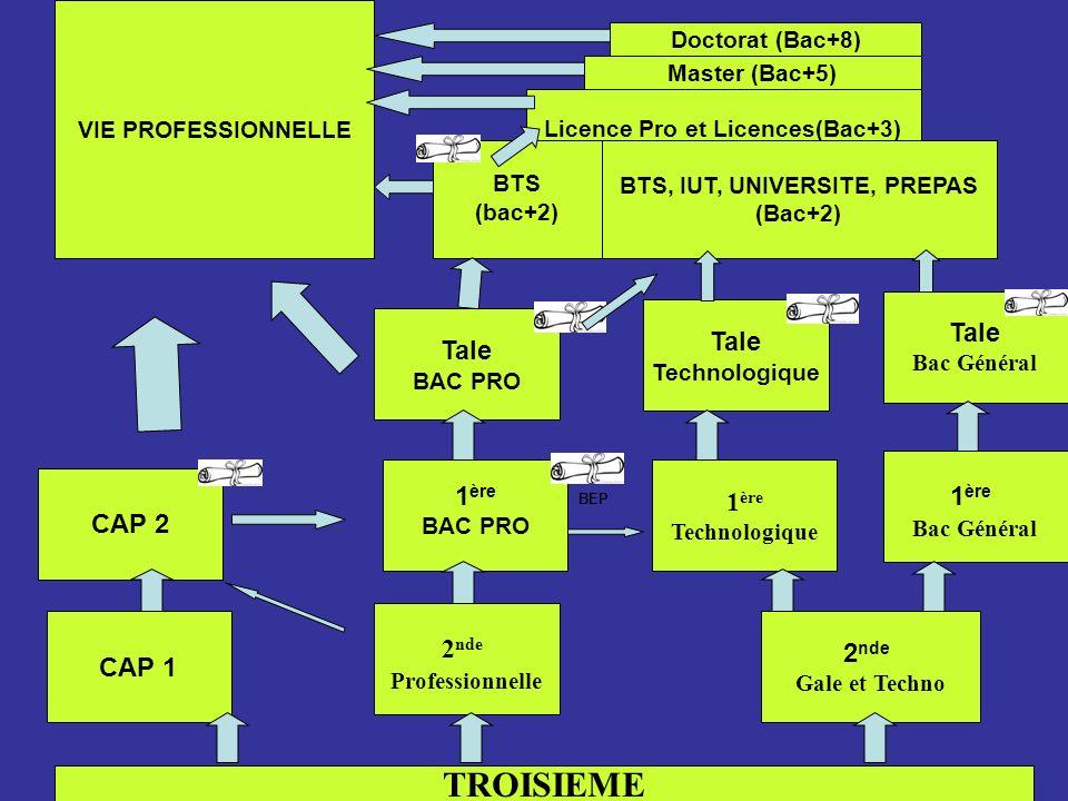 TROISIEME CAP 1 2 nde Professionnelle 2 nde Gale et Techno 1 ère Technologique CAP 2 1 ère BAC PRO Tale Technologique 1 ère Bac Général Tale Bac Génér