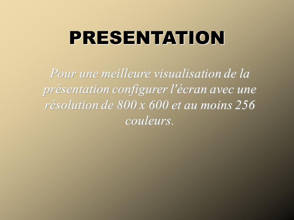 Pour une meilleure visualisation de la présentation configurer l'écran avec une résolution de 800 x 600 et au moins 256 couleurs. PRESENTATION Écran