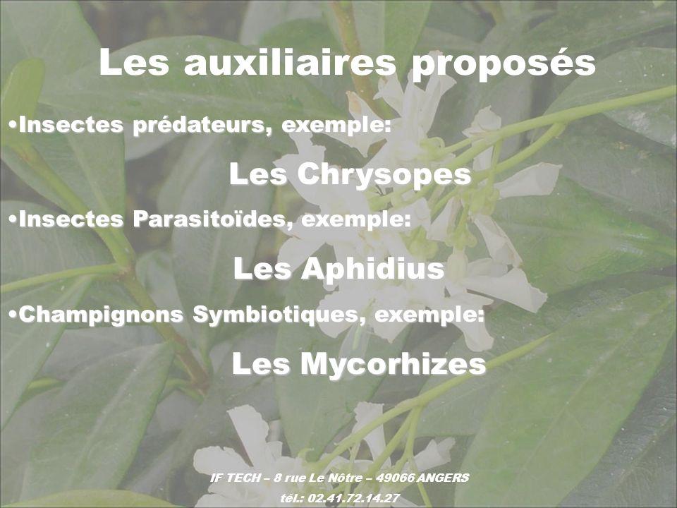 Les auxiliaires proposés Insectes prédateurs, exemple:Insectes prédateurs, exemple: Les Chrysopes Les Chrysopes Insectes Parasitoïdes, exemple:Insecte