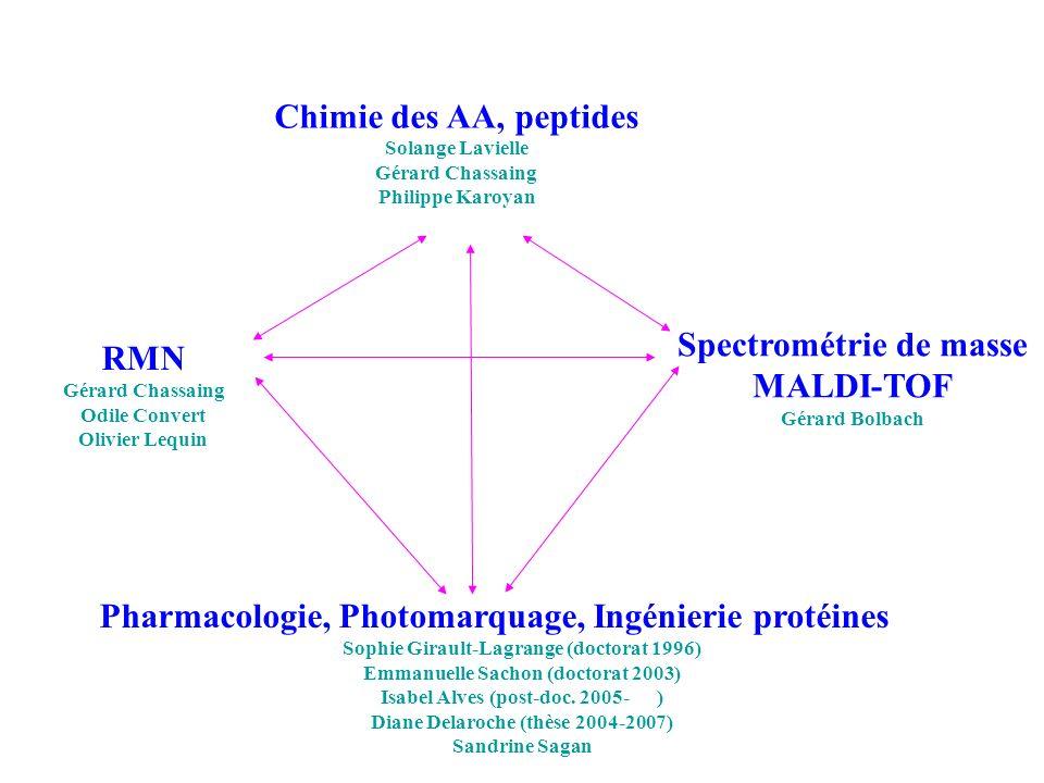 Chimie des AA, peptides Solange Lavielle Gérard Chassaing Philippe Karoyan Pharmacologie, Photomarquage, Ingénierie protéines Sophie Girault-Lagrange