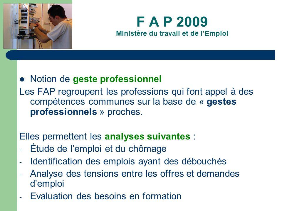 F A P 2009 Ministère du travail et de lEmploi Notion de geste professionnel Les FAP regroupent les professions qui font appel à des compétences commun