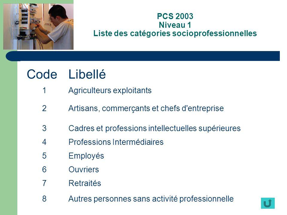 PCS 2003 Niveau 1 Liste des catégories socioprofessionnelles CodeLibellé 1Agriculteurs exploitants 2Artisans, commerçants et chefs d'entreprise 3Cadre