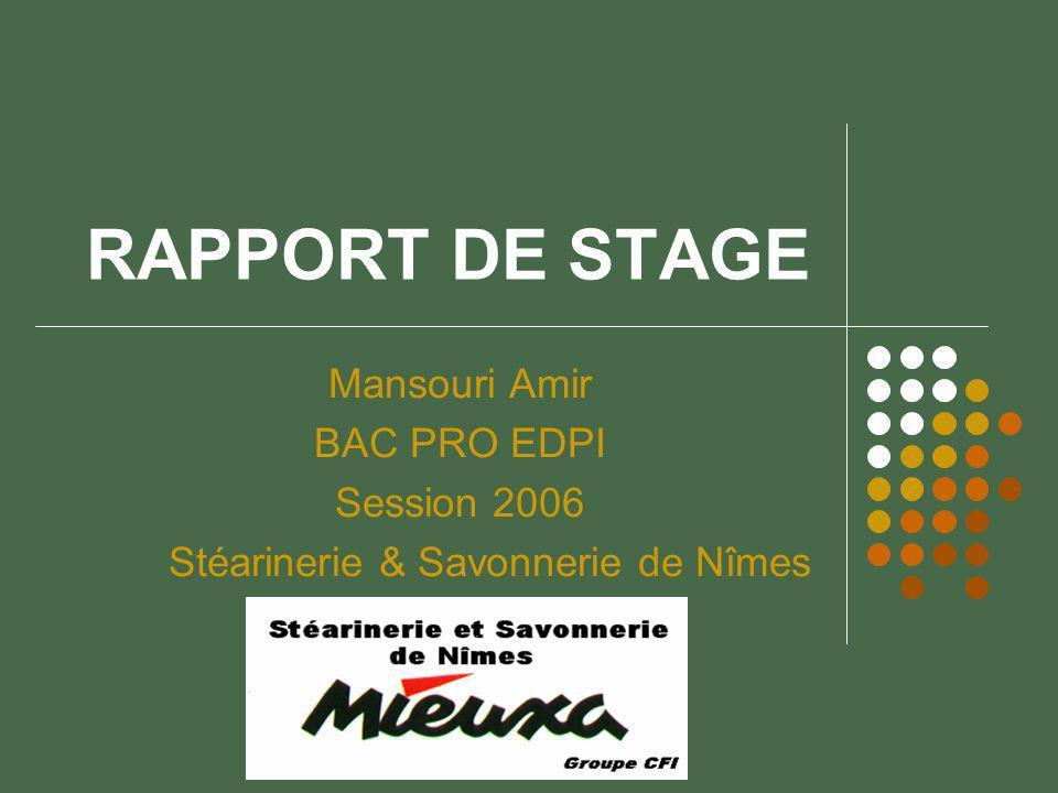 RAPPORT DE STAGE Mansouri Amir BAC PRO EDPI Session 2006 Stéarinerie & Savonnerie de Nîmes