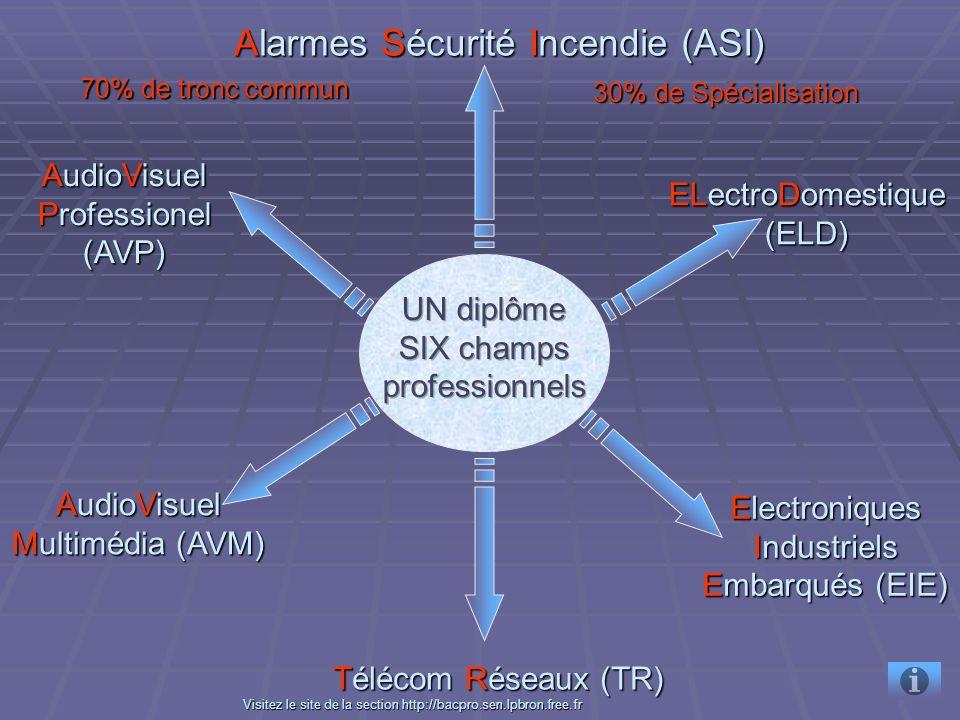 ELectroDomestique (ELD) ELectroDomestique (ELD) Electroniques Industriels Embarqués (EIE) Electroniques Industriels Embarqués (EIE) Alarmes Sécurité Incendie (ASI) Alarmes Sécurité Incendie (ASI) AudioVisuel Multimédia (AVM) AudioVisuel Multimédia (AVM) AudioVisuel Professionel (AVP) AudioVisuel Professionel (AVP) 70% de tronc commun 30% de Spécialisation VVVV iiii ssss iiii tttt eeee zzzz l l l l eeee s s s s iiii tttt eeee d d d d eeee l l l l aaaa s s s s eeee cccc tttt iiii oooo nnnn h h h h tttt tttt pppp :::: //// //// bbbb aaaa cccc pppp rrrr oooo....