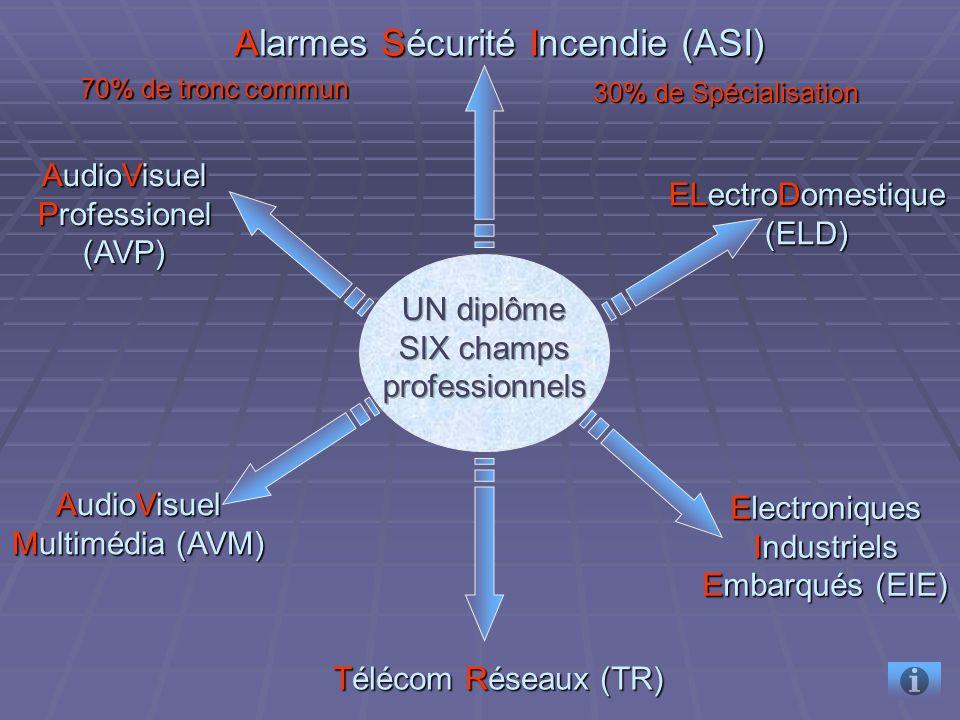 ELectroDomestique (ELD) ELectroDomestique (ELD) Electroniques Industriels Embarqués (EIE) Electroniques Industriels Embarqués (EIE) Alarmes Sécurité Incendie (ASI) Alarmes Sécurité Incendie (ASI) AudioVisuel Multimédia (AVM) AudioVisuel Multimédia (AVM) AudioVisuel Professionel (AVP) AudioVisuel Professionel (AVP) 70% de tronc commun 30% de Spécialisation Télécom Réseaux (TR) Télécom Réseaux (TR)