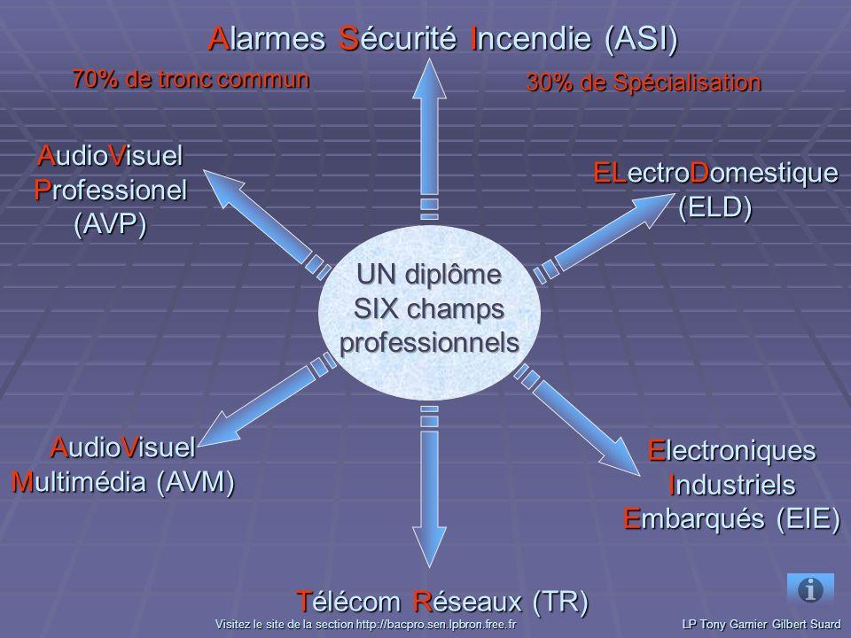 ELectroDomestique (ELD) ELectroDomestique (ELD) Electroniques Industriels Embarqués (EIE) Electroniques Industriels Embarqués (EIE) Alarmes Sécurité Incendie (ASI) Alarmes Sécurité Incendie (ASI) AudioVisuel Multimédia (AVM) AudioVisuel Multimédia (AVM) AudioVisuel Professionel (AVP) AudioVisuel Professionel (AVP) 70% de tronc commun 30% de Spécialisation LP Tony Garnier Gilbert Suard VVVV iiii ssss iiii tttt eeee zzzz l l l l eeee s s s s iiii tttt eeee d d d d eeee l l l l aaaa s s s s eeee cccc tttt iiii oooo nnnn h h h h tttt tttt pppp :::: //// //// bbbb aaaa cccc pppp rrrr oooo....