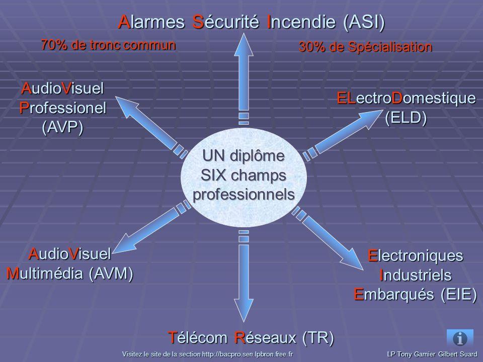 ELectroDomestique (ELD) ELectroDomestique (ELD) Electroniques Industriels Embarqués (EIE) Electroniques Industriels Embarqués (EIE) Alarmes Sécurité Incendie (ASI) Alarmes Sécurité Incendie (ASI) AudioVisuel Multimédia (AVM) AudioVisuel Multimédia (AVM) AudioVisuel Professionel (AVP) AudioVisuel Professionel (AVP)70% de tronc commun 30% de Spécialisation LP Tony Garnier Gilbert Suard VVVV iiii ssss iiii tttt eeee zzzz l l l l eeee s s s s iiii tttt eeee d d d d eeee l l l l aaaa s s s s eeee cccc tttt iiii oooo nnnn h h h h tttt tttt pppp :::: //// //// bbbb aaaa cccc pppp rrrr oooo....