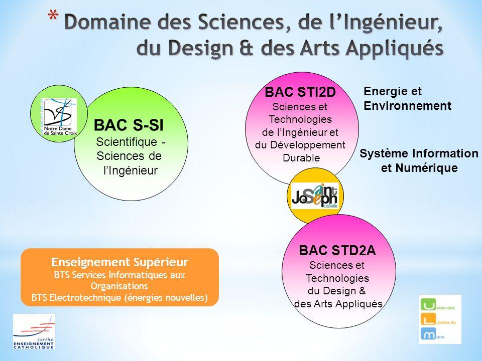 BAC S-SI Scientifique - Sciences de lIngénieur Enseignement Supérieur BTS Services Informatiques aux Organisations BTS Electrotechnique (énergies nouv
