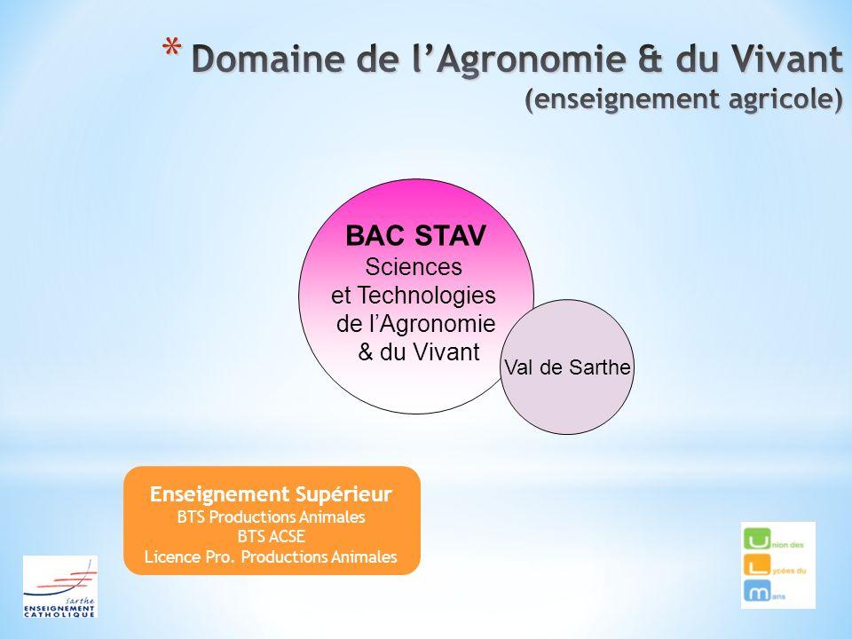 Enseignement Supérieur BTS Productions Animales BTS ACSE Licence Pro. Productions Animales BAC STAV Sciences et Technologies de lAgronomie & du Vivant