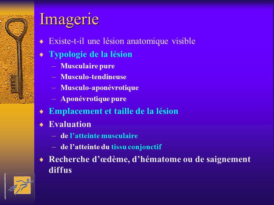 Imagerie Existe-t-il une lésion anatomique visible Typologie de la lésion –Musculaire pure –Musculo-tendineuse –Musculo-aponévrotique –Aponévrotique p