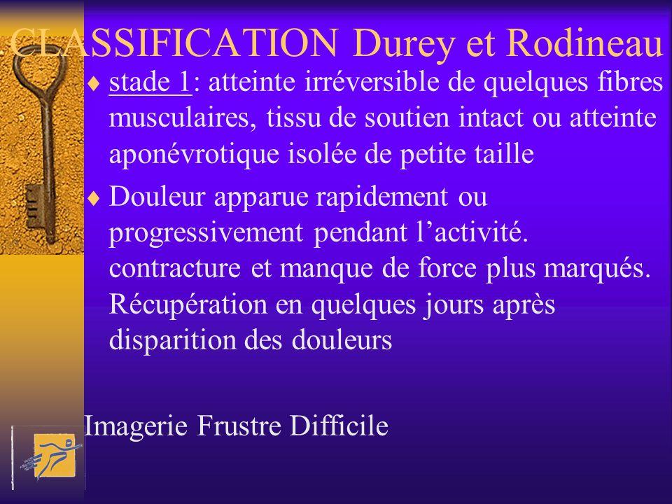 CLASSIFICATION Durey et Rodineau stade 1: atteinte irréversible de quelques fibres musculaires, tissu de soutien intact ou atteinte aponévrotique isol
