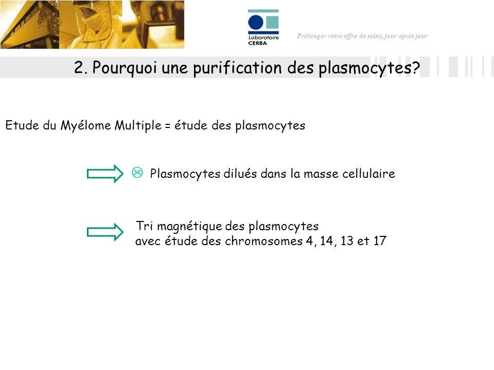 Prolonger votre offre de soins, jour après jour 2. Pourquoi une purification des plasmocytes? Tri magnétique des plasmocytes avec étude des chromosome