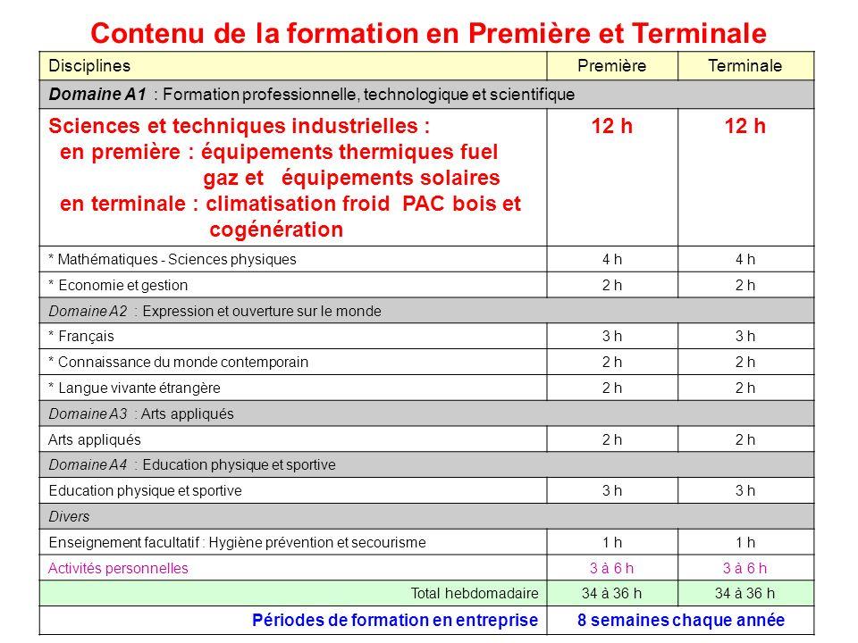 DisciplinesPremièreTerminale Domaine A1 : Formation professionnelle, technologique et scientifique Sciences et techniques industrielles : en première
