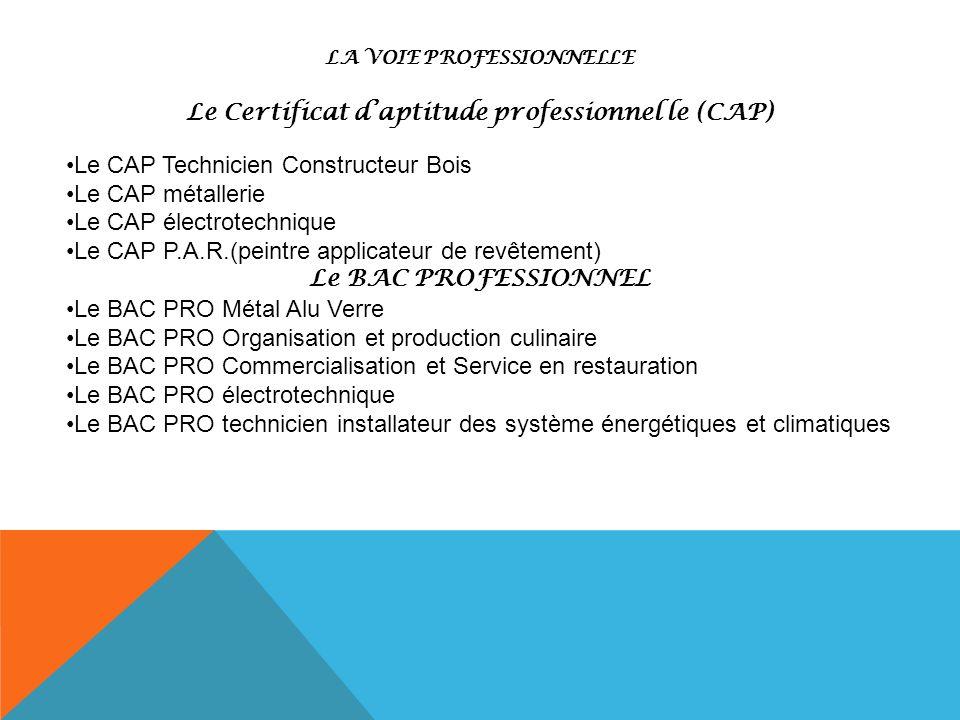 LA VOIE PROFESSIONNELLE Le Certificat daptitude professionnel le (CAP) Le CAP Technicien Constructeur Bois Le CAP métallerie Le CAP électrotechnique L
