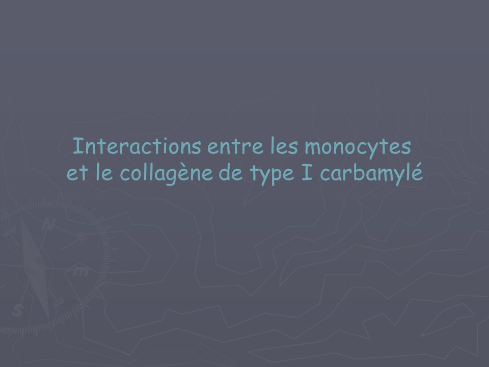 Interactions entre les monocytes et le collagène de type I carbamylé
