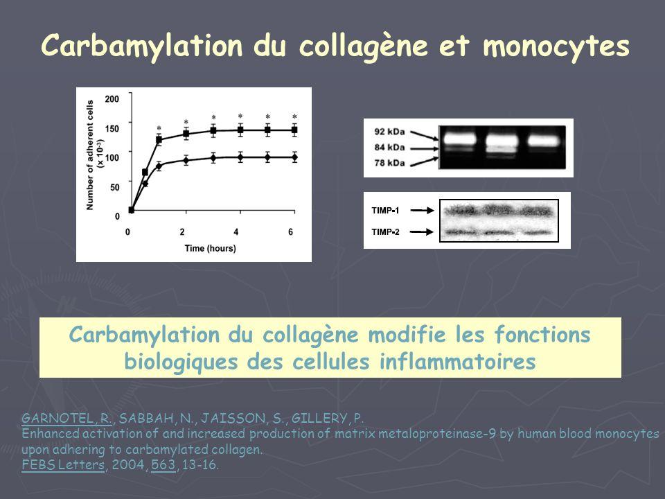 Carbamylation du collagène et monocytes Carbamylation du collagène modifie les fonctions biologiques des cellules inflammatoires GARNOTEL, R., SABBAH,