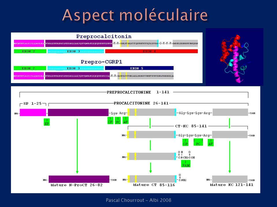 Cancérologie (Ghillani et al -1989) PCT corrélée à CT dans CMT PCT élevée dans tumeur NE et HC Grands brûlés (Nylen ES et al.