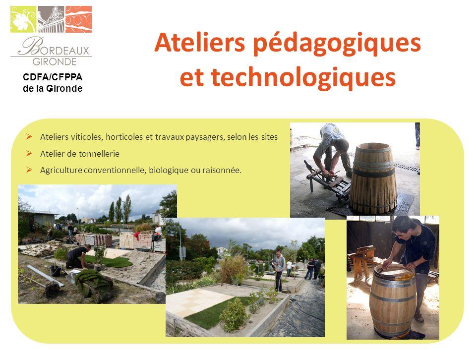 CDFA/CFPPA de la Gironde Ateliers pédagogiques et technologiques Ateliers viticoles, horticoles et travaux paysagers, selon les sites Atelier de tonne