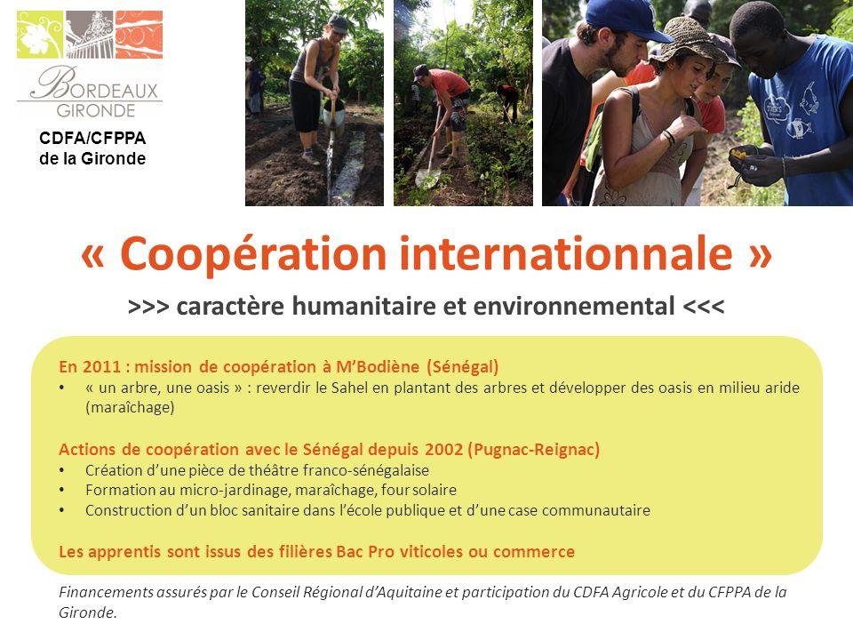 CDFA/CFPPA de la Gironde En 2011 : mission de coopération à MBodiène (Sénégal) « un arbre, une oasis » : reverdir le Sahel en plantant des arbres et d