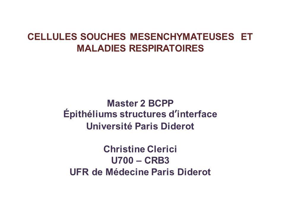 CELLULES SOUCHES MESENCHYMATEUSES ET MALADIES RESPIRATOIRES Master 2 BCPP Épithéliums structures dinterface Université Paris Diderot Christine Clerici
