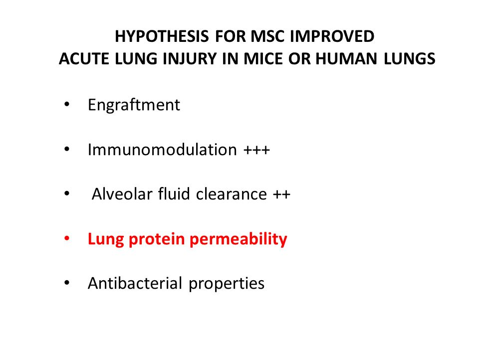 HYPOTHESIS FOR MSC IMPROVED ACUTE LUNG INJURY IN MICE OR HUMAN LUNGS Engraftment Immunomodulation +++ Alveolar fluid clearance ++ Lung protein permeab