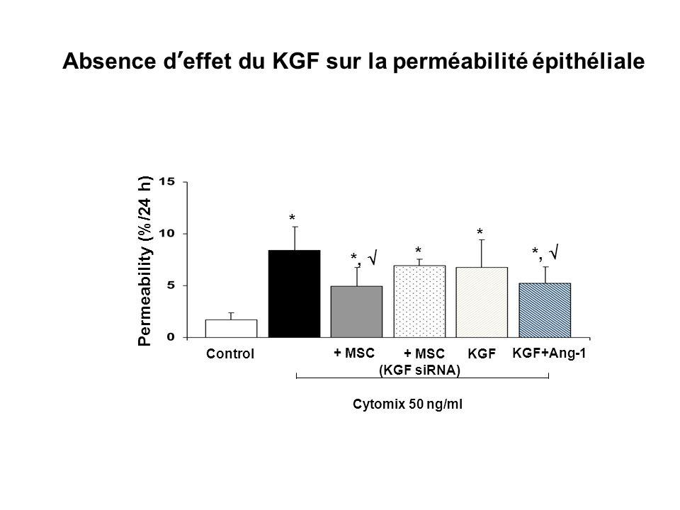 Permeability (%/24 h) Control + MSC KGF + MSC (KGF siRNA) KGF+Ang-1 * * *, * Cytomix 50 ng/ml Absence deffet du KGF sur la perméabilité épithéliale