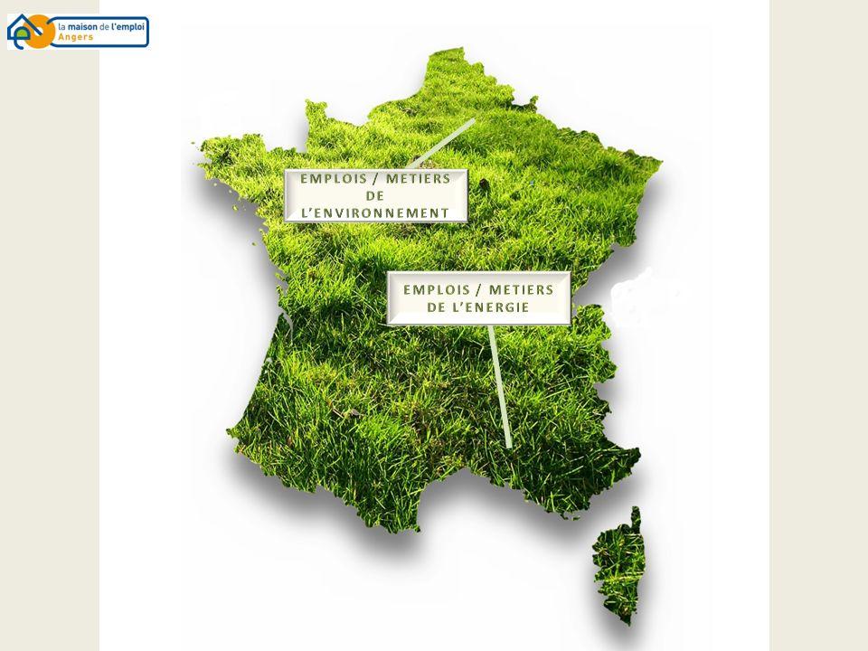 Mission(s) Le directeur environnement pilote la mise en œuvre de politiques publiques de lenvironnement.