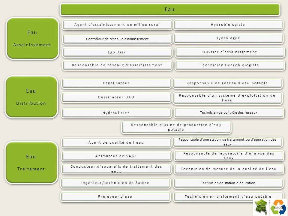 Protection et gestion des ressources naturelles Mission(s) Ce spécialiste de biologie végétale étudie les plantes à laide de toutes les techniques dinvestigation classiques et modernes (analyses morphologiques, anatomiques, phytochimiques, cytogénétiques, études de la biologie de la reproduction).