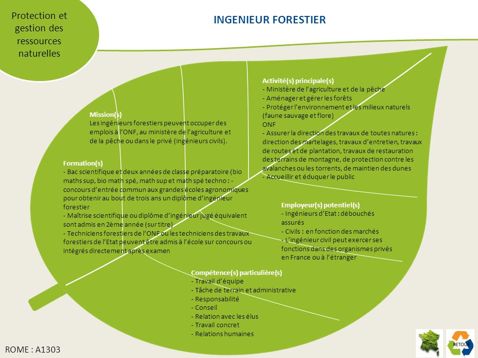 Protection et gestion des ressources naturelles Mission(s) Les ingénieurs forestiers peuvent occuper des emplois à lONF, au ministère de lagriculture et de la pêche ou dans le privé (ingénieurs civils).