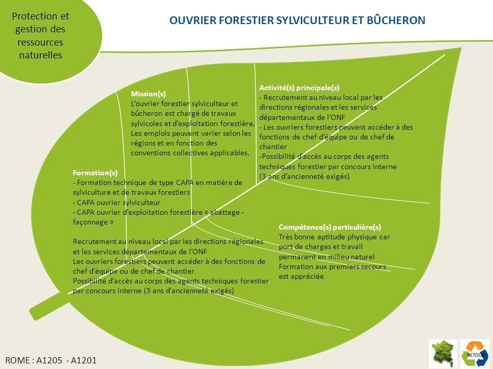 Protection et gestion des ressources naturelles Mission(s) Louvrier forestier sylviculteur et bûcheron est chargé de travaux sylvicoles et dexploitation forestière.