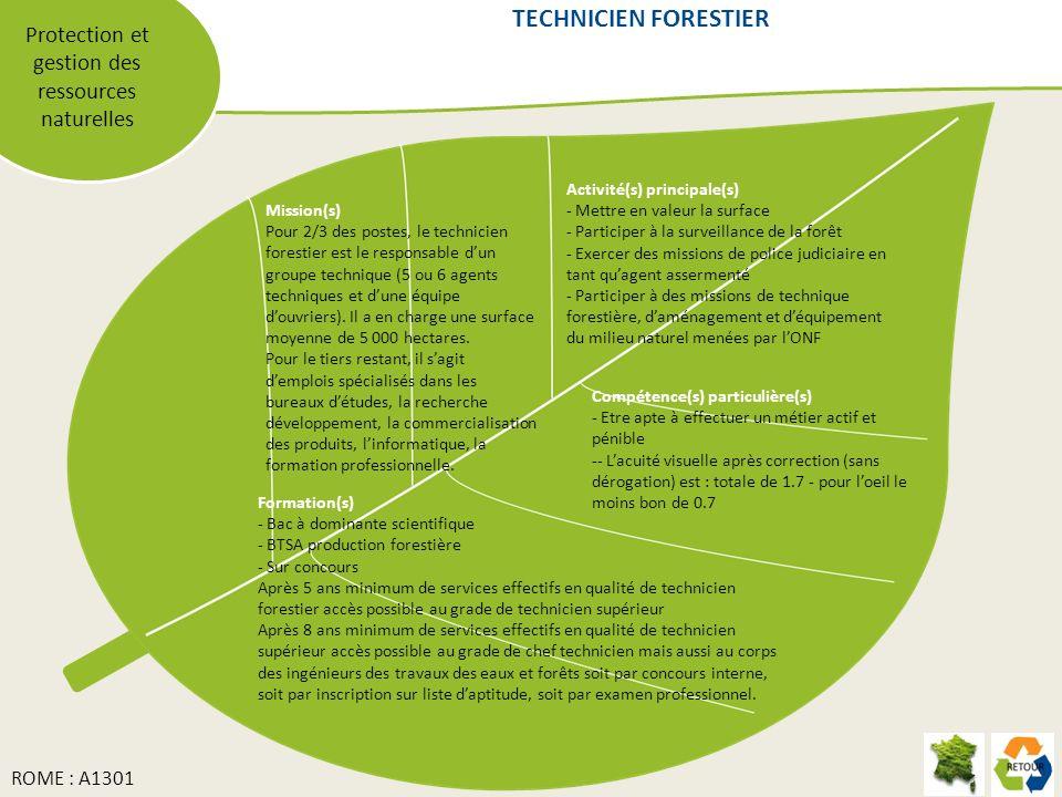 Protection et gestion des ressources naturelles Mission(s) Pour 2/3 des postes, le technicien forestier est le responsable dun groupe technique (5 ou