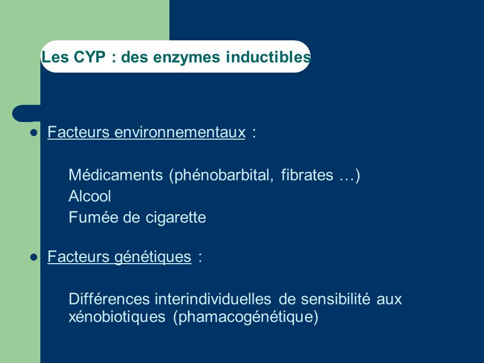 Les CYP : des enzymes inductibles Facteurs environnementaux : – Médicaments (phénobarbital, fibrates …) – Alcool – Fumée de cigarette Facteurs génétiques : – Différences interindividuelles de sensibilité aux xénobiotiques (phamacogénétique)