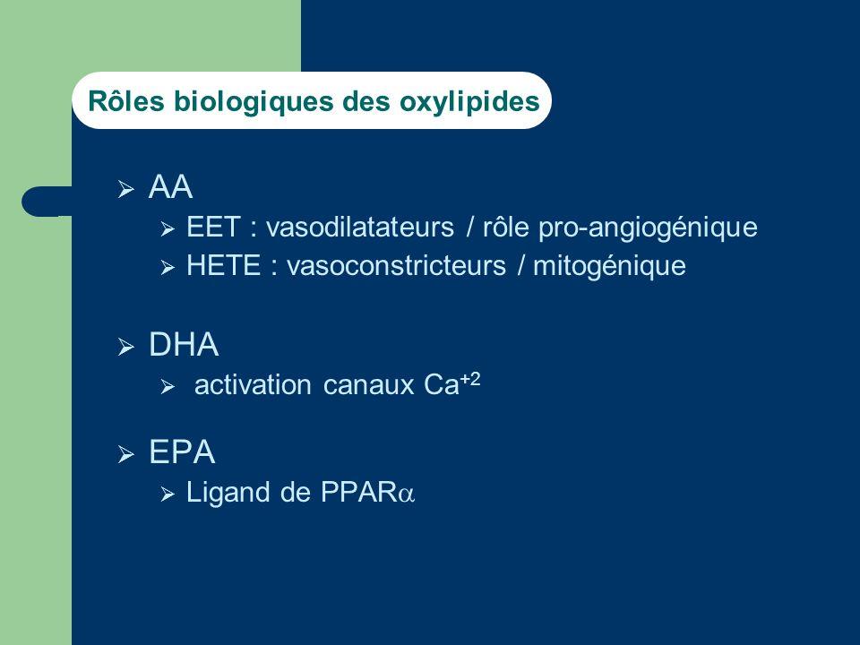 Quelles isoenzymes impliquées Enzymes recombinantes Paramètres cinétiques Inductions Inhibitions (compétitives / « suicides ») Anticorps monoclonaux SiRNA CYP 450 : famille muligénique (57 chez lhomme)