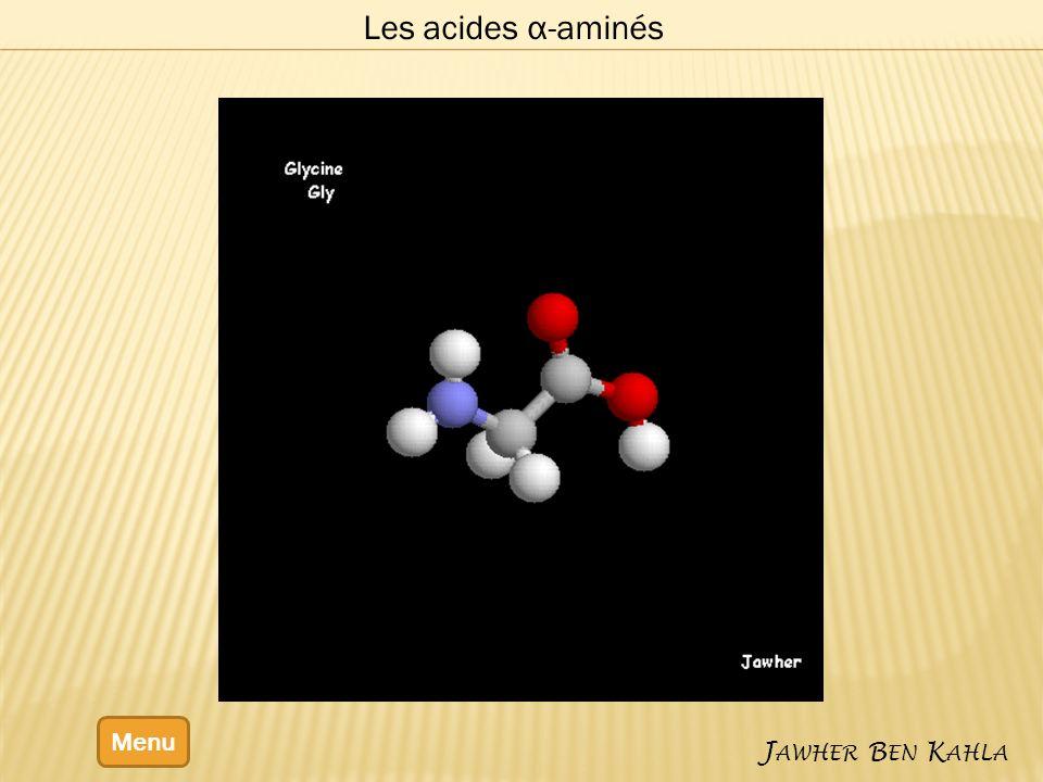 Les acides α-aminés Menu J AWHER B EN K AHLA