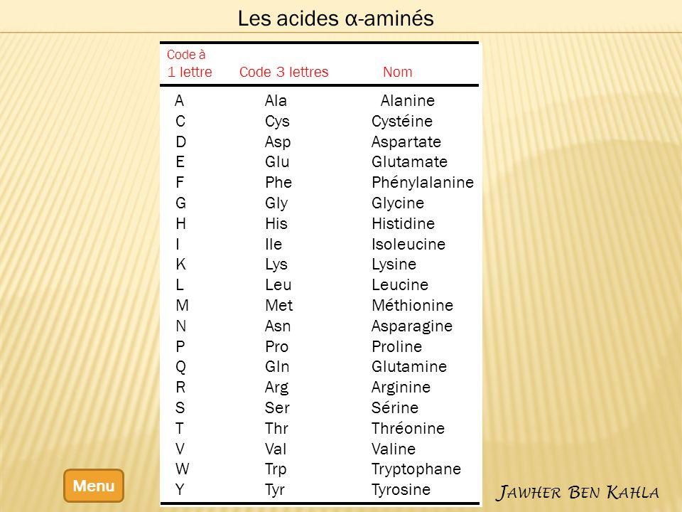 Les acides α-aminés Menu J AWHER B EN K AHLA Code à 1 lettre Code 3 lettres Nom A Ala Alanine C Cys Cystéine D Asp Aspartate E Glu Glutamate F Phe Phé