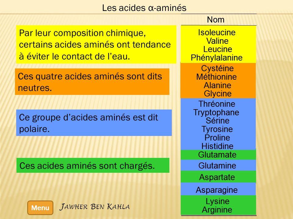 Les acides α-aminés Menu Ces acides aminés sont chargés. Ce groupe dacides aminés est dit polaire. Ces quatre acides aminés sont dits neutres. Par leu