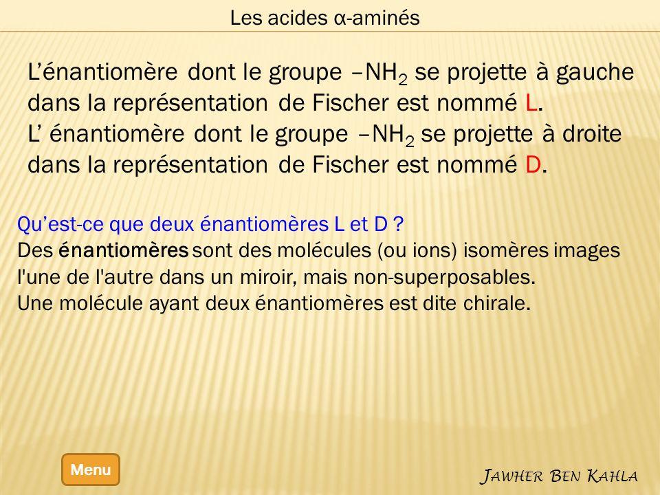 Les acides α-aminés Menu J AWHER B EN K AHLA Lénantiomère dont le groupe –NH 2 se projette à gauche dans la représentation de Fischer est nommé L. L é