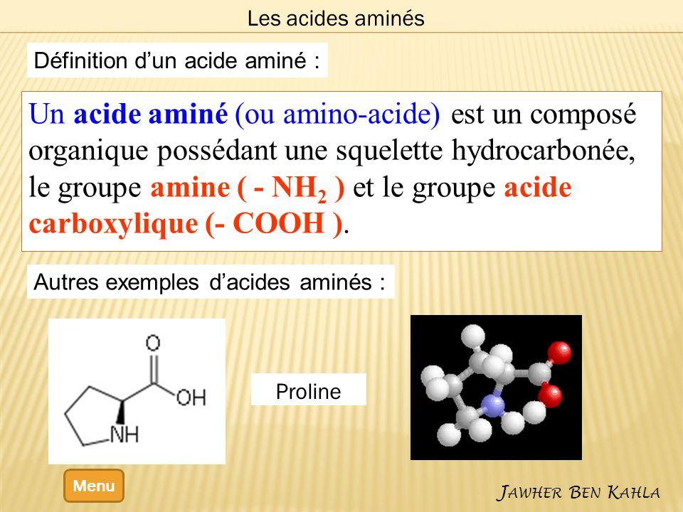 Définition dun acide aminé : Un acide aminé (ou amino-acide) est un composé organique possédant une squelette hydrocarbonée, le groupe amine ( - NH 2 ) et le groupe acide carboxylique (- COOH ).