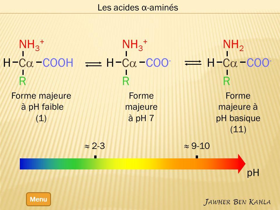 Les acides α-aminés Menu J AWHER B EN K AHLA 2-3 9-10 pH Forme majeure à pH faible (1) Forme majeure à pH 7 Forme majeure à pH basique (11) C COOH NH