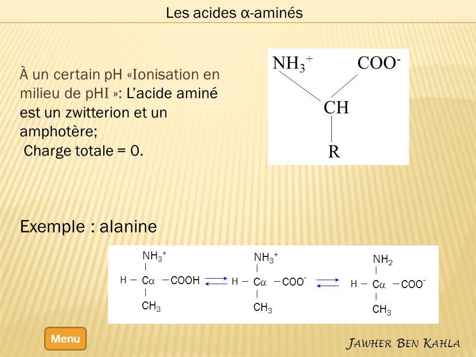 Les acides α-aminés Menu J AWHER B EN K AHLA Exemple : alanine À un certain pH « I onisation en milieu de pH I »: Lacide aminé est un zwitterion et un amphotère; Charge totale = 0.