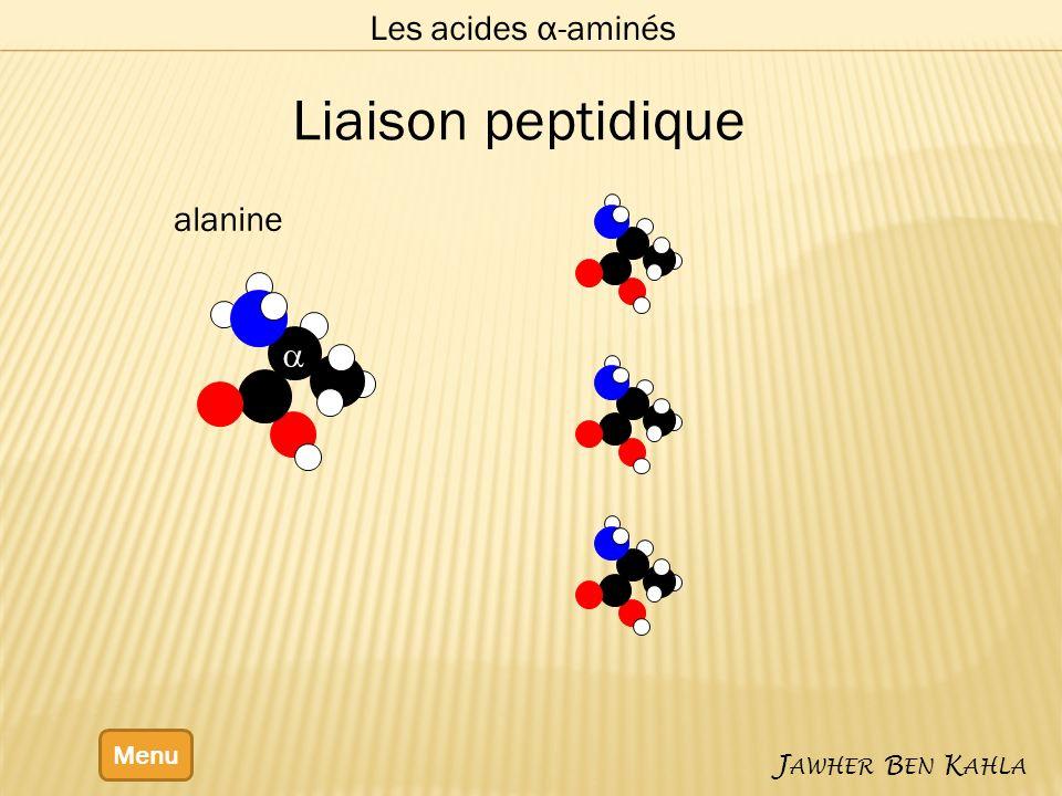 Les acides α-aminés Menu J AWHER B EN K AHLA alanine Liaison peptidique
