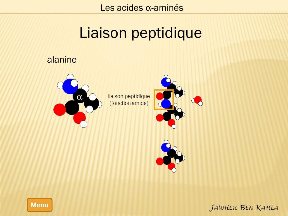 Les acides α-aminés Menu J AWHER B EN K AHLA alanine liaison peptidique (fonction amide) Liaison peptidique