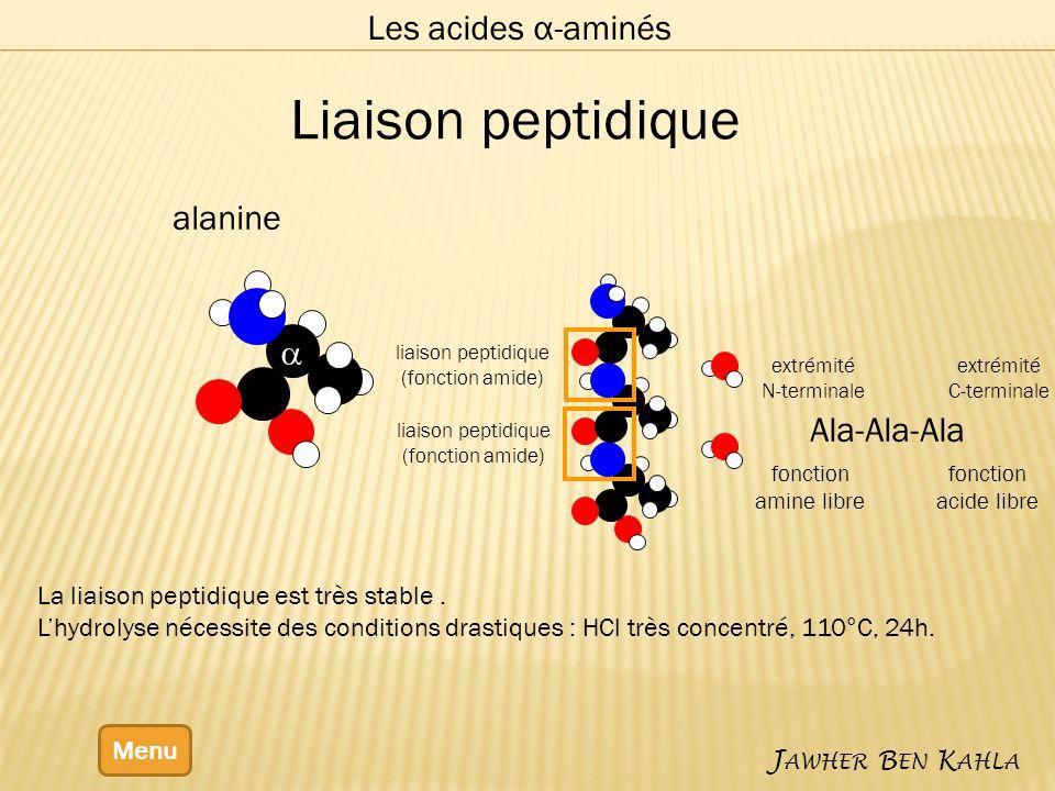 Les acides α-aminés Menu J AWHER B EN K AHLA alanine liaison peptidique (fonction amide) liaison peptidique (fonction amide) Liaison peptidique La liaison peptidique est très stable.