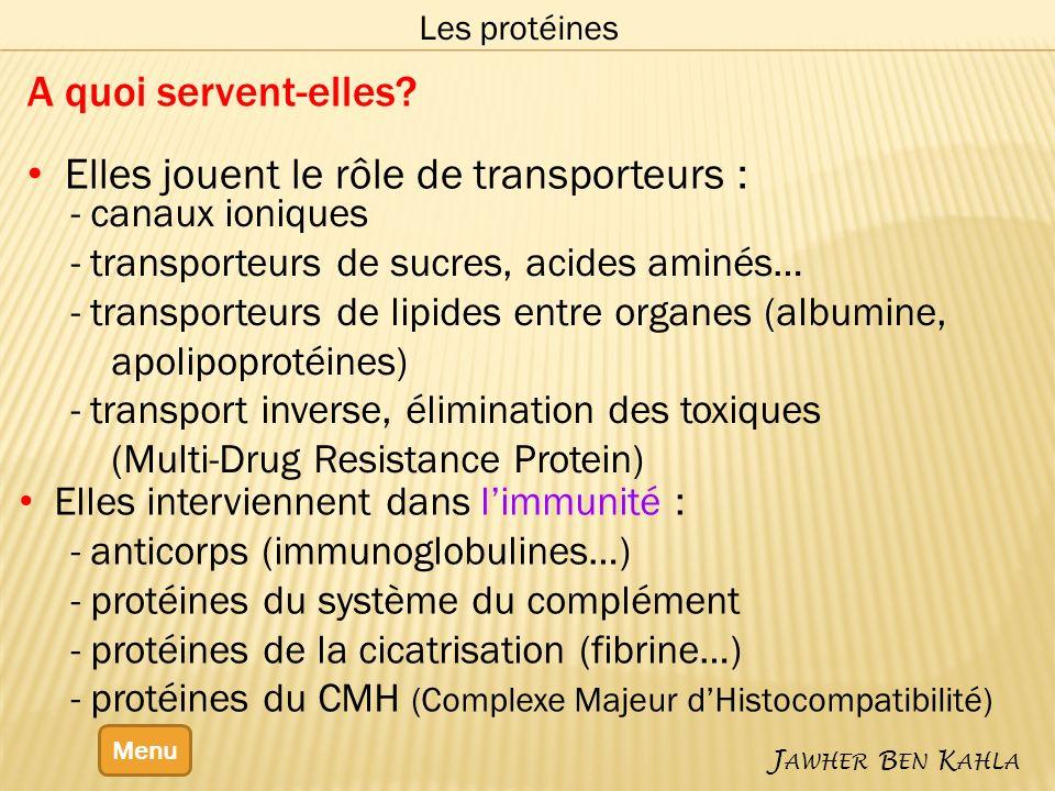Menu J AWHER B EN K AHLA Les protéines A quoi servent-elles.