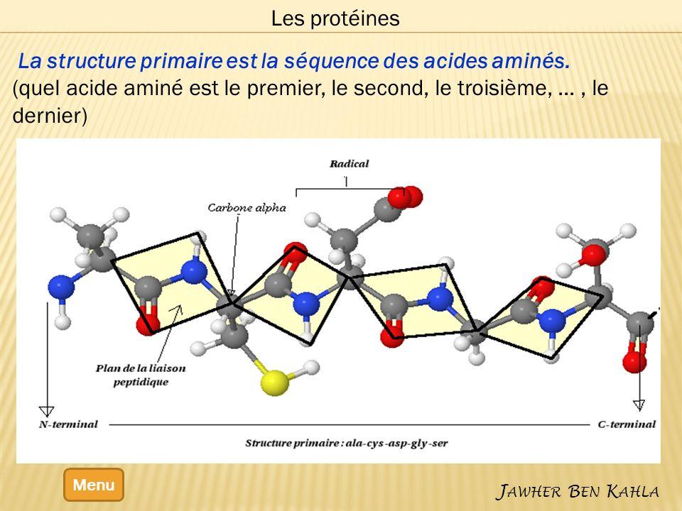 Menu J AWHER B EN K AHLA Les protéines La structure primaire est la séquence des acides aminés.